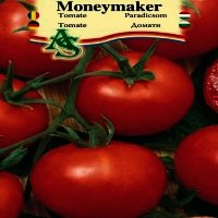 Seminte tomate Moneymaker