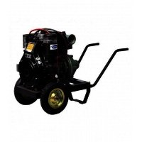 Motopompa Antor 3LD 510 LY-3MS, manual start, 12 CP